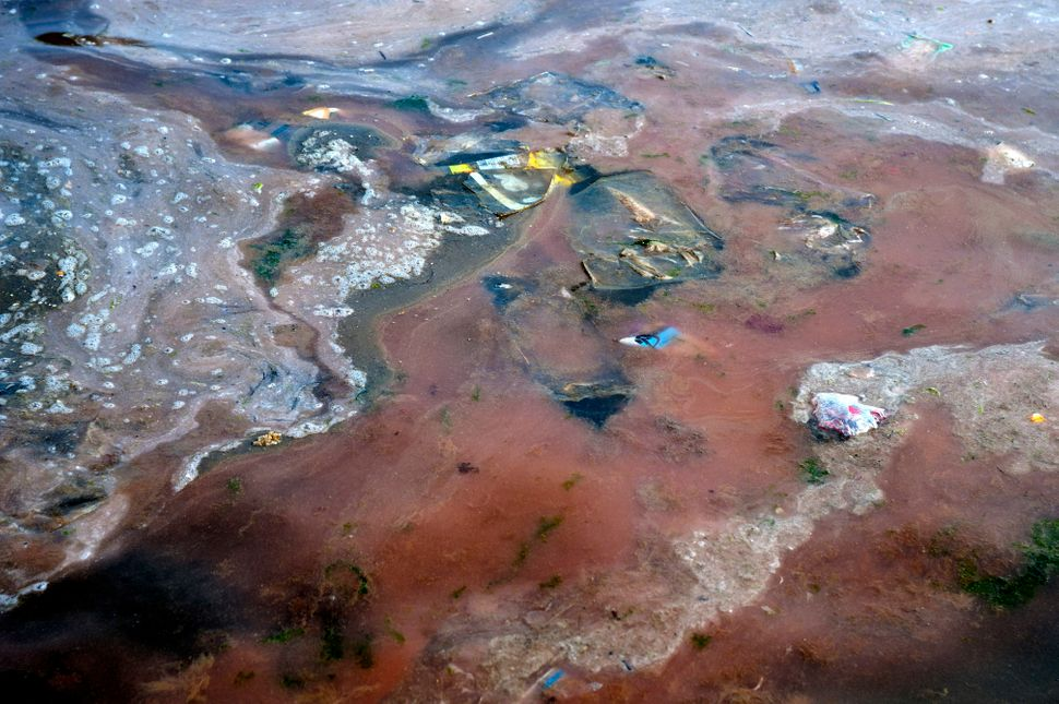 Red tide and garbage pollution are seen in the sea in Qingdao, China, on May 21, 2012.