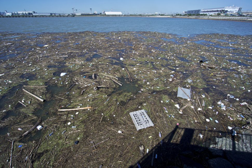 Garbage from the Gulf of Osaka is washed ashore in Osaka, Japan.