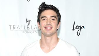 NEW YORK, NY - JUNE 25:  Musician Steve Grand attends Logo's 'Trailblazer Honors' 2015 at the Cathedral of St. John the Divine on June 25, 2015 in New York City.  (Photo by Michael Loccisano/Getty Images for Logo)