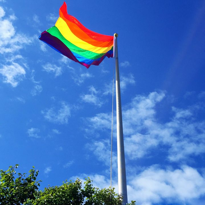 A rainbow flag was raised at the fair's front gate.