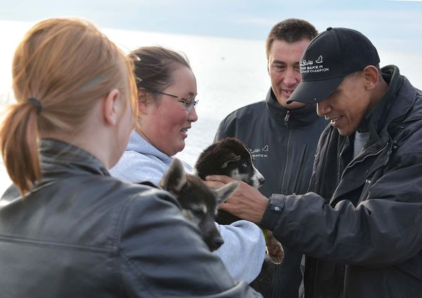 Obama reaches out to pick up a puppy belonging to musher John Baker (second from right) in Kotzebue, Alaska.