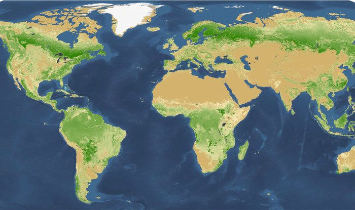 A map of the world's tree population, according to new research.