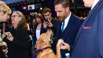 MANDATORY BYLINE: John Furniss / Corbis<BR/>
