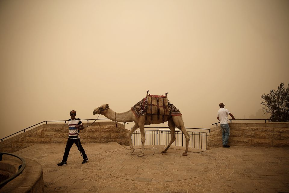 A Palestinian man walks with a camel at Mont of Olives in Jerusalem during a sandstorm, on Sept. 8,