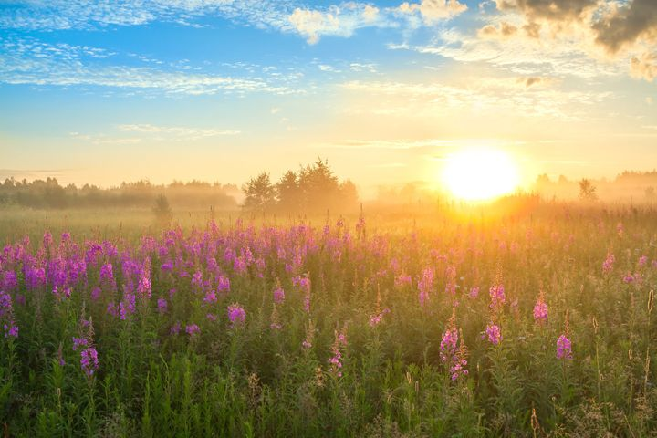 Daily meditation greet the new day huffpost morning hymn by charles wesley m4hsunfo