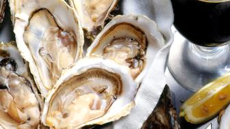 Opened oysters with glass of stout
