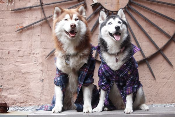 Moochi & Skye make plaid look posh intheir Urban Outfitters shirts (too privatefor IG).