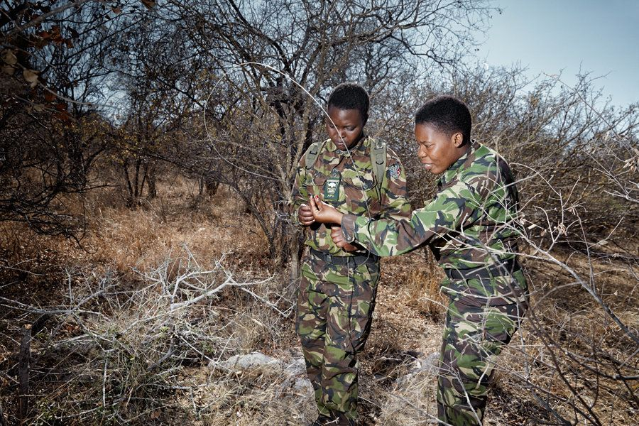 "Proud & Yenzekile find and disable a snare laid by bush meat poachers. Proud, 25: ""I love nature, I want to know more and"