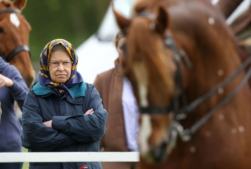 Queen Elizabeth II watches a horse with apparent displeasure on the first day of the Royal Windsor Horse Show.