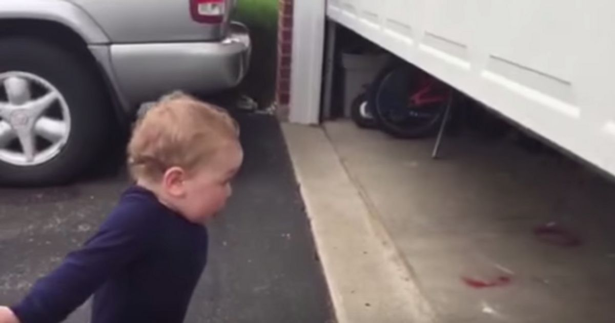 Toddler Has His Mind Blown When He Sees Garage Door Open