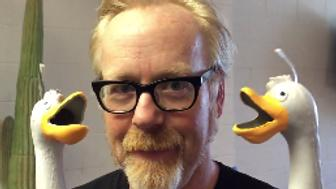 "MythBusters co-host Adam Savage takes on the ""duck army."""