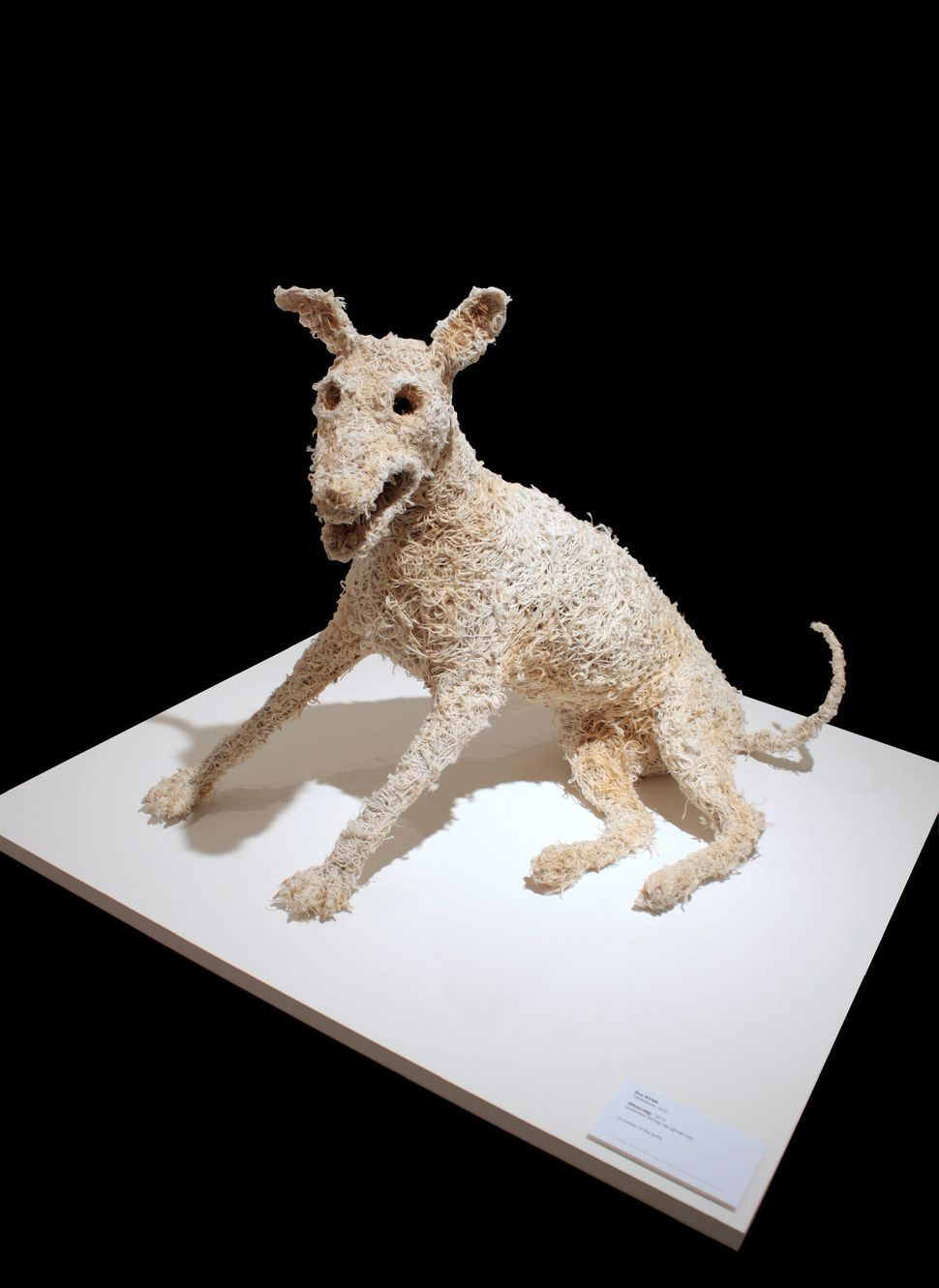 """Ghost Dog,"" Recycled wire, synthetic ghost net, beach rope, cotton thread"