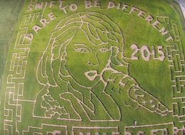 Taylor Swift Immortalized In 'Amaizing' Corn Maze