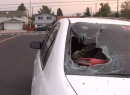 Watermelon-Wielding Vandals Destroying Cars In Reno