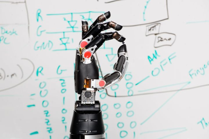 The robotic hand shows off its precise dexterity and pressure.
