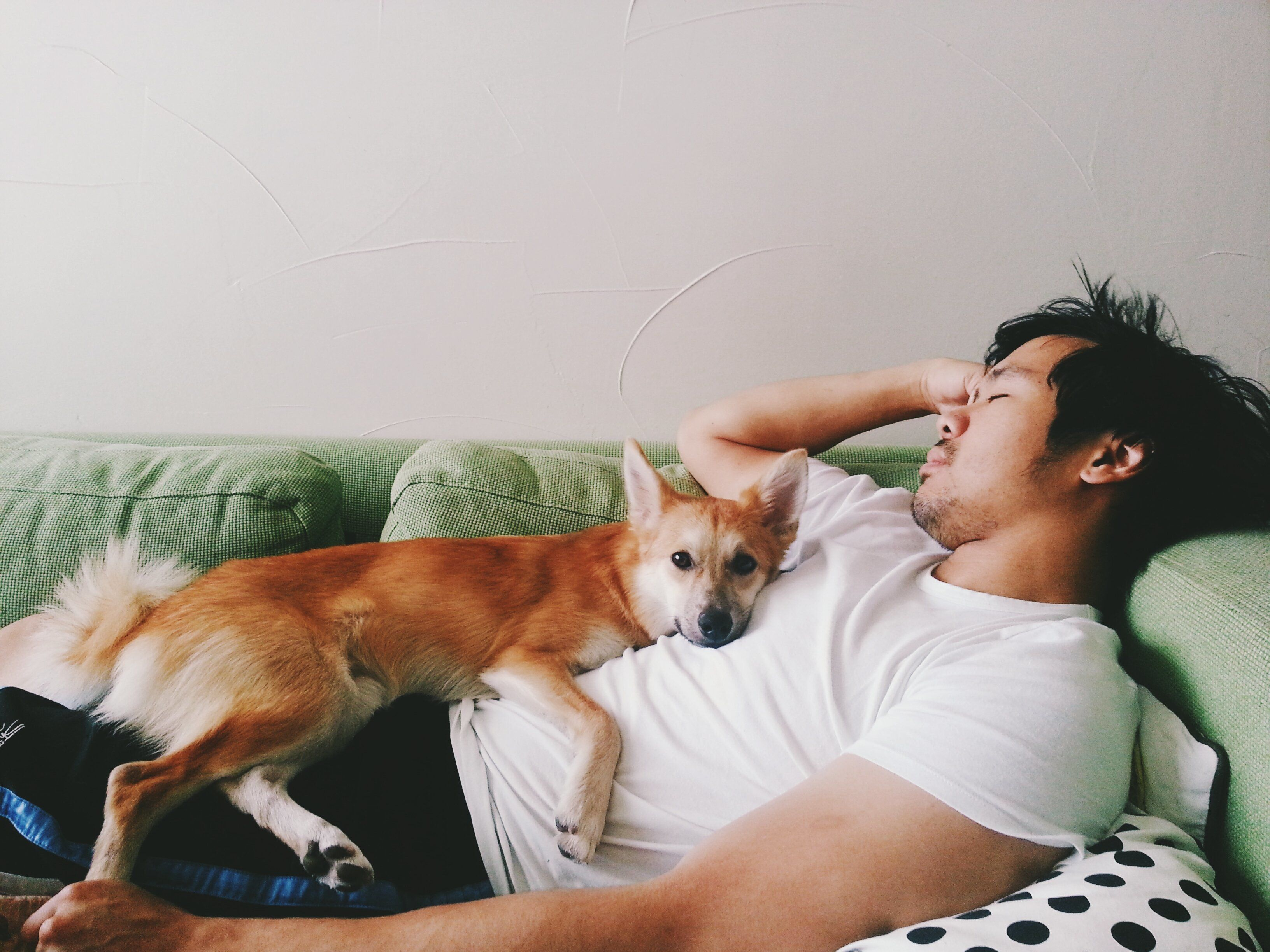My husband and our puppy, a Shiba Inu Mix, shares cuddles on the couch.