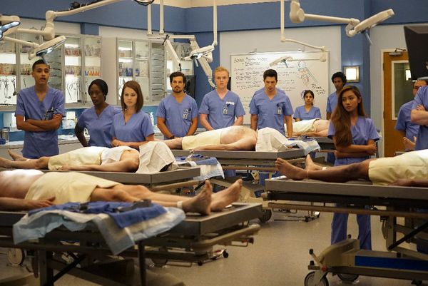 """Going strong at Season 12, """"Grey's Anatomy""""hasn't lost any of the qualities that made audiences fall in love with the o"""