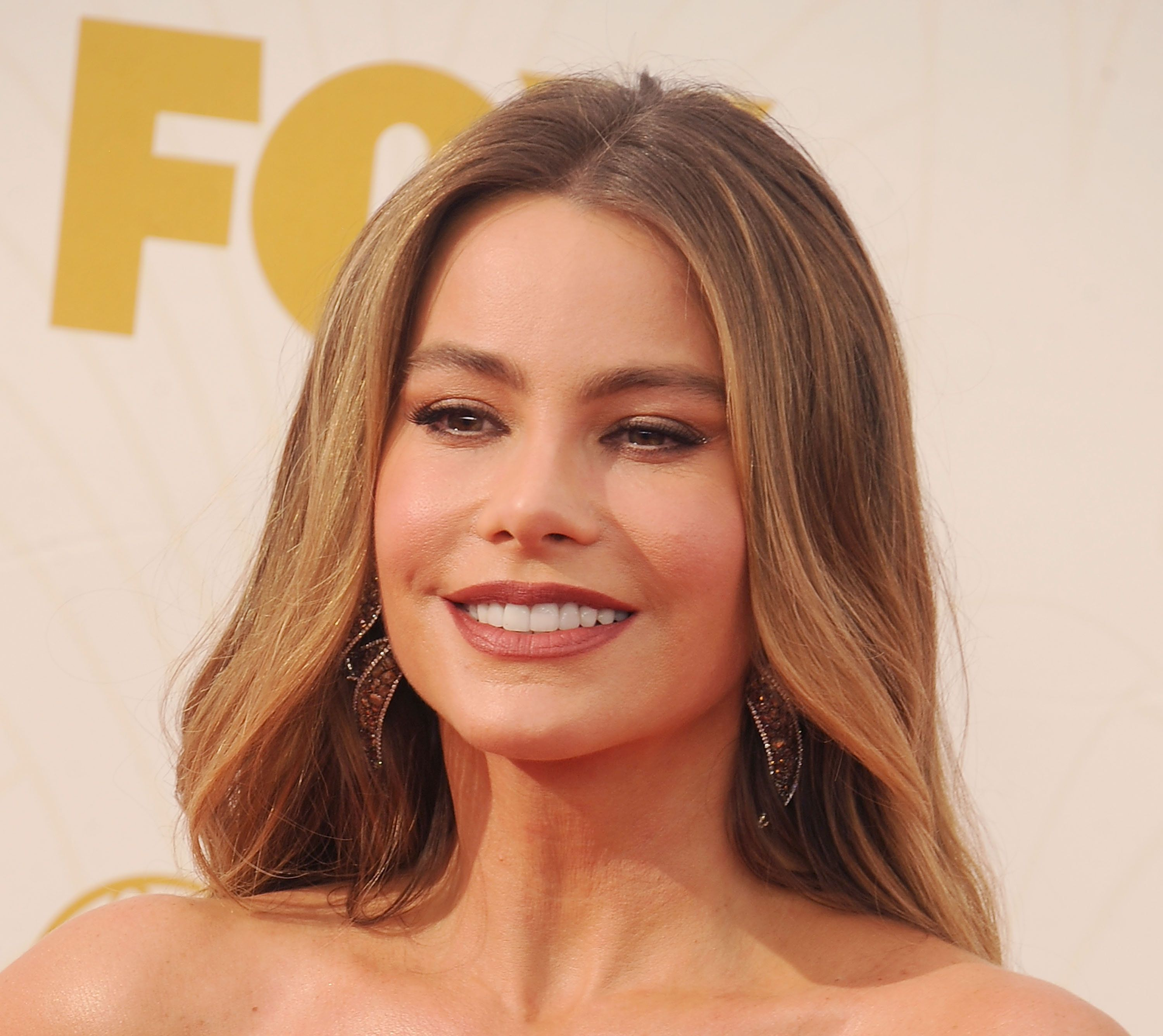 LOS ANGELES, CA - SEPTEMBER 20:  Actress Sofia Vergara arrives at the 67th Annual Primetime Emmy Awards at Microsoft Theater on September 20, 2015 in Los Angeles, California.  (Photo by Gregg DeGuire/WireImage)