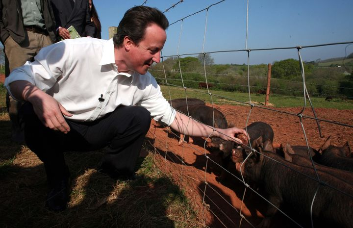 """A new biography claims that British Prime MinisterDavid Camerononceinserted """"a private part of his anatomy"""""""
