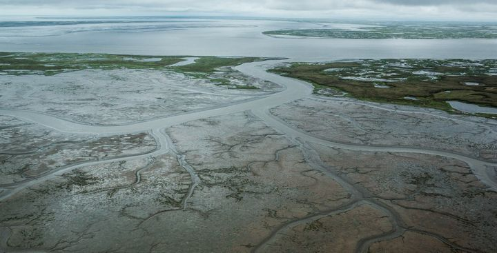 The marshy tundra around Newtok, Alaska, which has seen some of its permafrost thaw due to rising global temperatures.