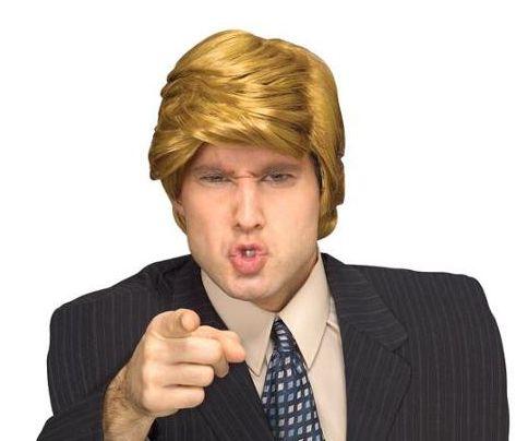 "<a href=""http://www.amazon.com/Rubies-Adult-Billionaire-Wig/dp/B00466UDWY/ref=cts_ap_1_fbt?tag=thehuffingtop-20"">Rubie's&nbsp"