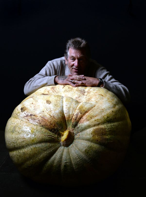 Brian Marshall of Nottingham poses with his first placed pumpkin weighing 230 kilo (507.06 lbs).