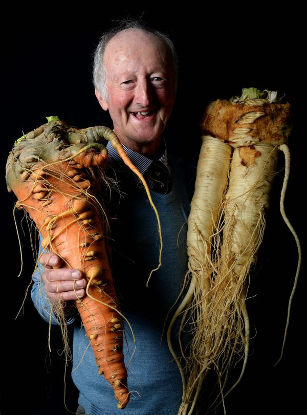 Peter Glazebrook of Newark with his first placed carrot weighing 4.8 kilo (10.58 lbs) and first placed parsnip weighing 5.455