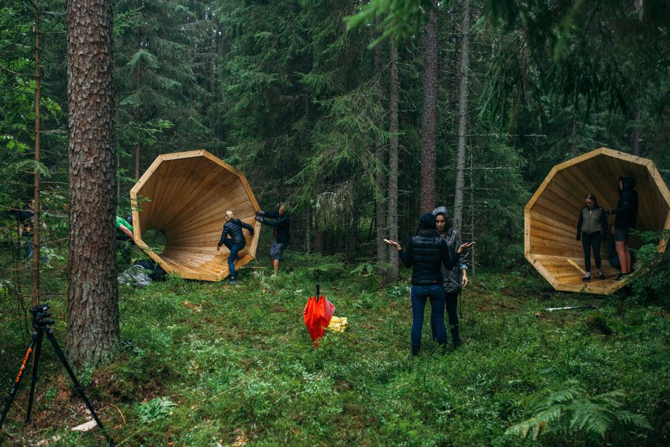 Estonia let you listen to sounds of the forest the huffington post