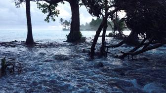 A high tide energized by storm surges washes across Ejit Island in Majuro Atoll, Marshall Islands on March 3, 2014, causing widespread flooding and damaging a number of homes. Officials in the Marshall Islands blamed climate change on March 5, 2014, for severe flooding in the Pacific nation's capital Majuro which has left 1,000 people homeless.  Climate change is a major concern for Pacific island states such as the Marshals, Kiribati and Tuvalu, where many atolls are barely a metre (three feet) above sea level and risk being engulfed by rising waters.  AFP PHOTO/GIFF JOHNSON        (Photo credit should read GIFF JOHNSON/AFP/Getty Images)