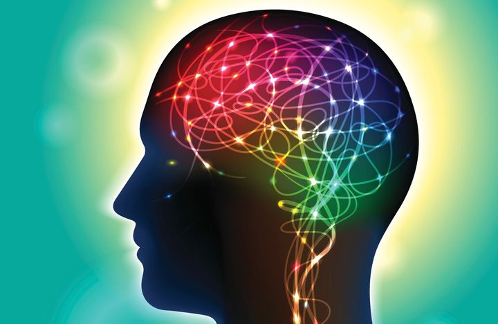 Oxford researchers found that greater connectivity inparts of the brainassociated with memory, language and imagi