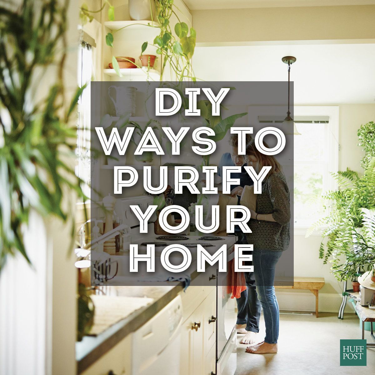 Lovely How To Purify Your Home Without A Pricey Air Purification System | HuffPost