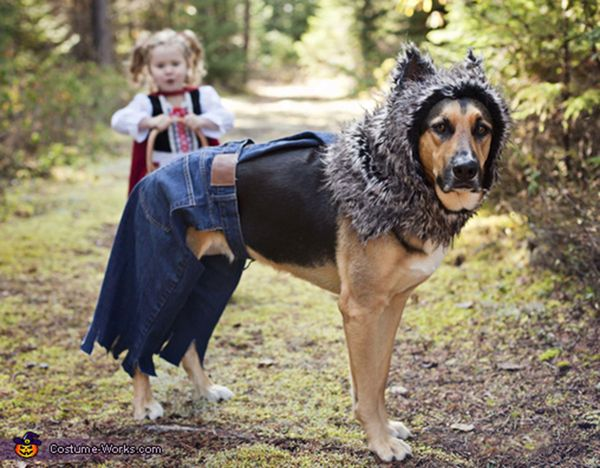 """<a href=""""http://www.costume-works.com/costumes_for_pets/little_bad_wolf.html"""">via Costume Works</a>"""