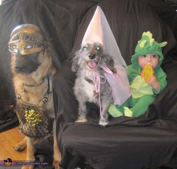 """<a href=""""http://www.costume-works.com/costumes_for_pets/knight_princess_and_dragon.html"""">via Costume Works</a>"""