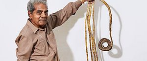 LONGEST FINGERNAILS SHRIDAR CHILLAL GUINNESS WORLD RECORDS