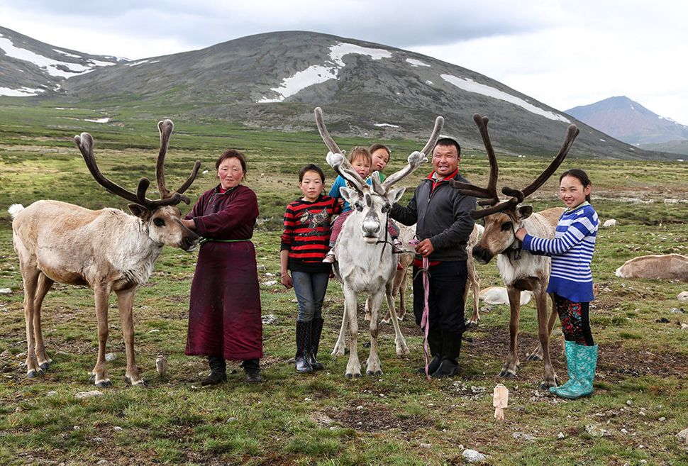 The entire family poses proudly with some of their reindeers. From left to right, Bolorma, Ulziitsetseg, Tuvshinbayar, Ulziic