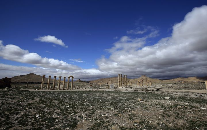 A picture taken on March 14, 2014 shows a general view of the ancient oasis city of Palmyra, 215 kilometres northeast of Dama
