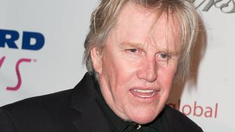 BEVERLY HILLS, CA - FEBRUARY 22: Gary Busey arrives at The Norby Walters 25th Annual Night of 100 Stars Oscar Viewing Gala at The Beverly Hilton Hotel on February 22, 2015 in Beverly Hills, California.  (Photo by Jennifer Lourie/Getty Images)