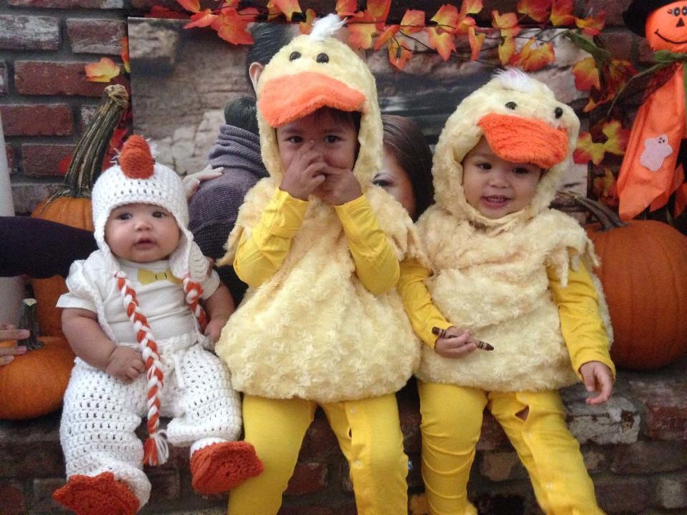 48 Duck Duck Goose  sc 1 st  HuffPost & How To Turn 2015u0027s Biggest Memes Into Halloween Costumes | HuffPost