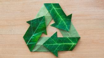 Leaves cut and laid to make recycling symbol