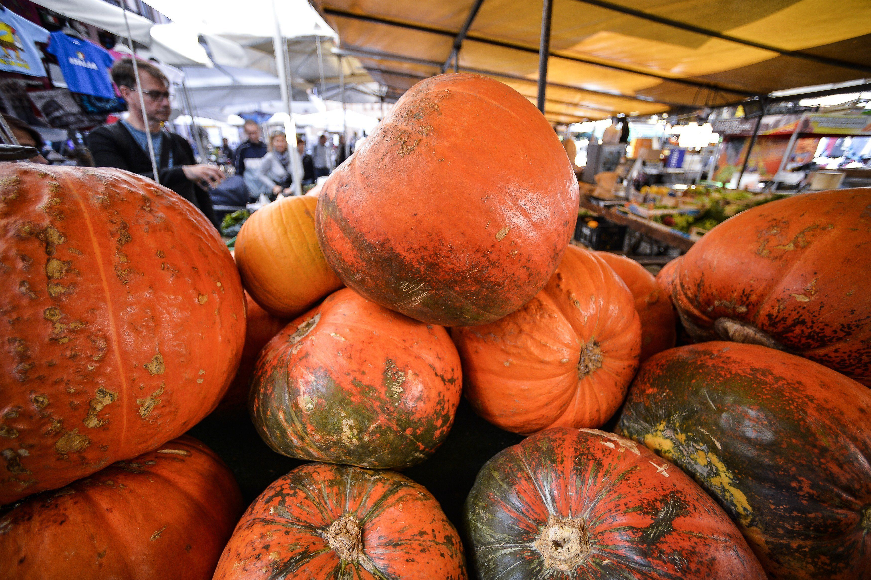 A picture shows pumpkins on a stall at the Campo di Fiori food market, in central Rome, on November 4, 2014.  AFP PHOTO / ANDREAS SOLARO        (Photo credit should read ANDREAS SOLARO/AFP/Getty Images)