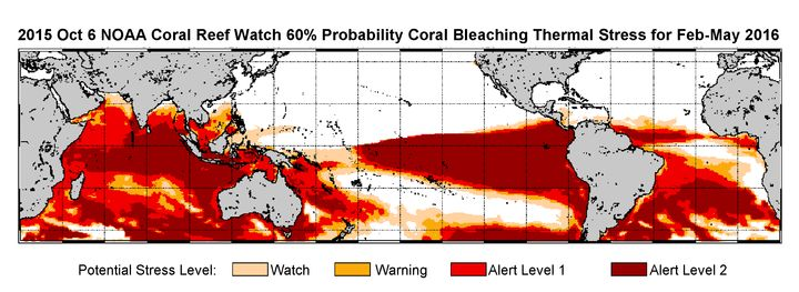 An extended bleaching outlook showing the threat of bleaching expected in Kiribati, the Galapagos, the South Pacific -- espec