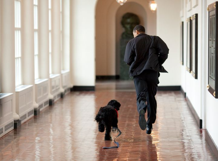 In this handout image released by the White House on April 13, 2009, Obama runs down a corridor with the family's new dog, Bo