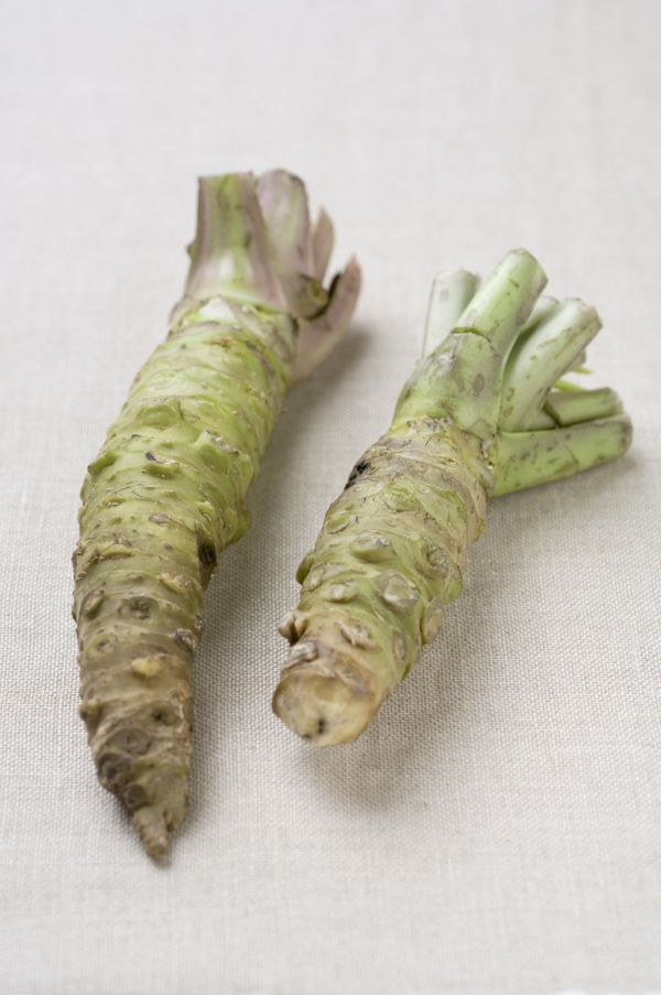 Most of the wasabi you'll find in Japanese restaurants in the United States and even often in Japan is not real wasabi.