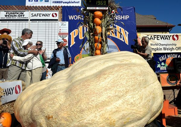 Steve Daletas (L), from Pleasant Hill, Oregon, hugs his mother Jeannette Daletas next to his 1,969 pound (893 KG) pumpkin tha