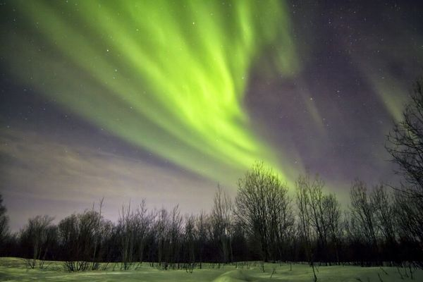 An aurora dances above the horizon in Russia <br><br><strong>Why Go</strong>: In Northern Russia, you've got a good chance of