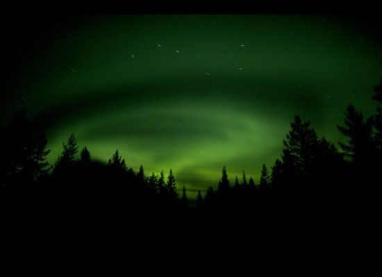 Swedish Lapland's Aurora Borealis: green is the most common Aurora color<br><br><strong>Why Go</strong>: The area around Abis