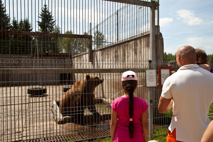 This bear symbolizedthe Soviet Union during WWII. There are three bears living atthe park.