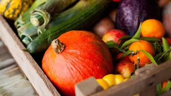 Vegetable natural composition on wooden background. Basic of heathy diet, the best ingrediants full of vitamins from our vegetable garden harvest.