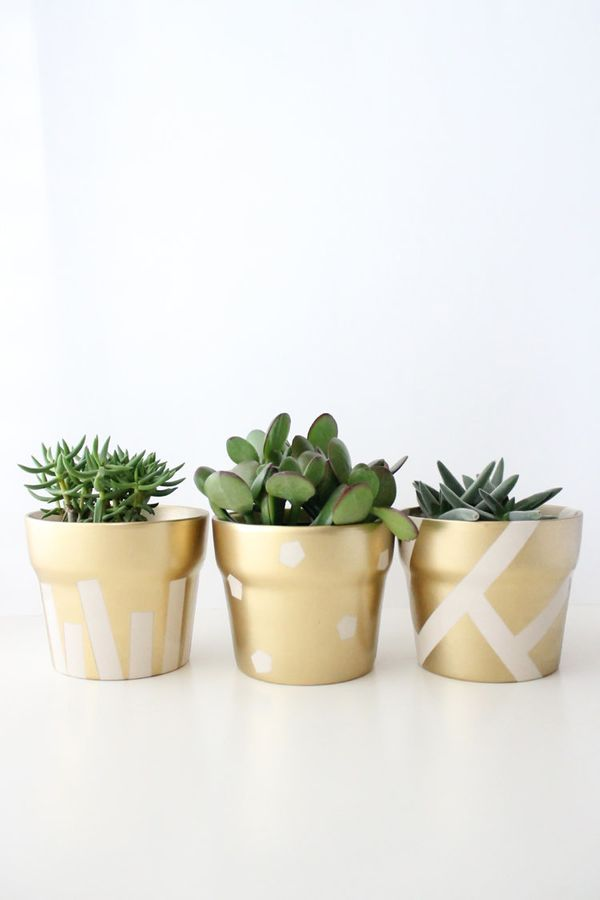 "<a href=""http://www.deliacreates.com/gilded-succulent-pots-st-patricks-day/"">Give your pots a chic update with this easy DIY"