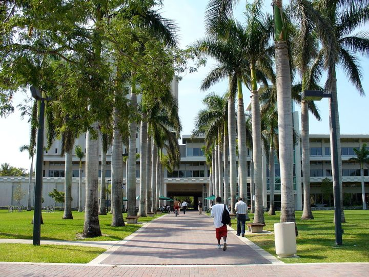Students walk outside of a library on the University of Miami campus. The school is being sued by a former graduate student w